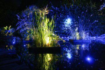 Jardin de lumière 2015