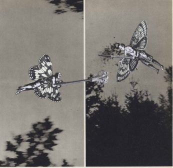 joute-collage-thaddee-2015
